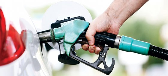 Fuel price outlook 28 November